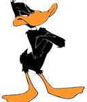 Enter Daffy Duck