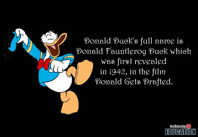 Blustery Angry Duck Born Happy Birthday Donald