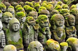 Jizo forest