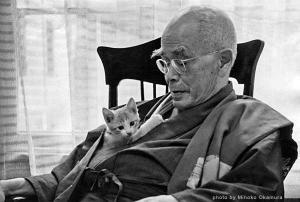 Suzuki with cat