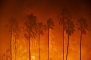 Fire (LA Times)