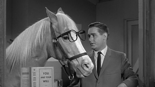 Mr. Ed Co-Star Alan Young has Died - Here is  Clint Eastwood in a Dust Up with Famous Horse Mr. Ed