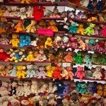 Sermon on Beanie Babies, Scarcity and Vanity.