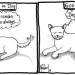 god as dog or cat cartoon by nakedpastor david hayward