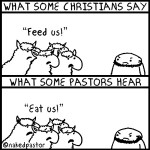 Feed, don't eat, my sheep!