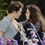 "What ""Fireproof"" and ""Twilight"" Have in Common"