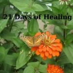 Day 17 of 21 Days of Healing: How To Respond