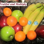 Part 1 -Chapter 1: The First Commandment – Be Fruitful and Multiply Review