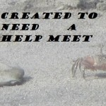 Created To Need A Help Meet – Part 2 How Do I Need Thee? (More About Women's Nature)