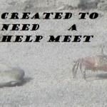 Created To Need A Help Meet – Part 12 Mr. Steady (Dem Wimminz Hormonez)