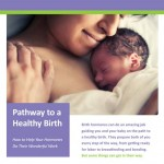 2 Mama Essays and 2 Pregnancy Prayers + 1 Roadmap To a Healthy Birth