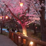 7 Suggestions For A Shinto-Pagan Spring Equinox