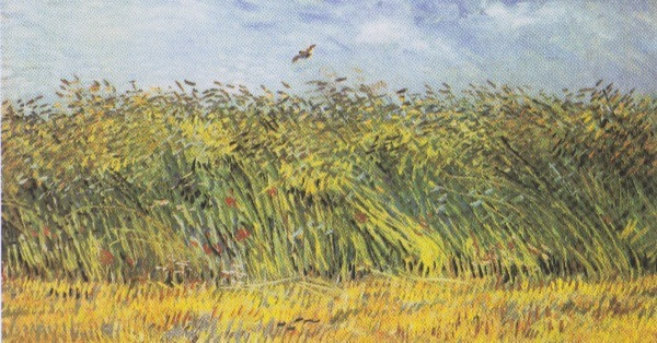 """Wheat Field With a Lark"" by Vincent Van Gogh.  From WikiMedia."