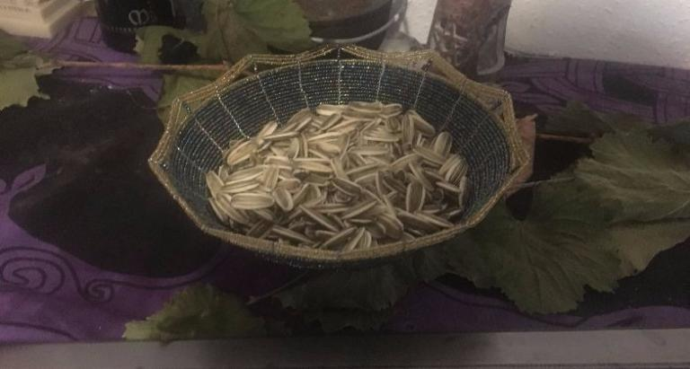 Those are some big sunflower seeds!