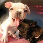 Lupercalia: I Haz A Happy