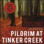 On the Hubris of Prayer Experts: Pilgrim at Tinker Creek, Part I
