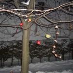 2012_11-December-136