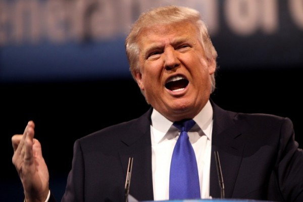The President of the United States or a wide-mouthed tree frog? You decide. Image obtained through Creative Commons.