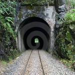 train-tunnel-10195006