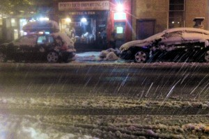 Nor'easter snowstorm in New York City on November 7, 2012, a week after tropical hurricane Sandy (c) 2012 Phil Fox Rose