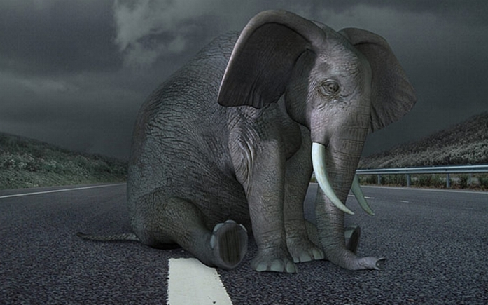 Sad-Elephant