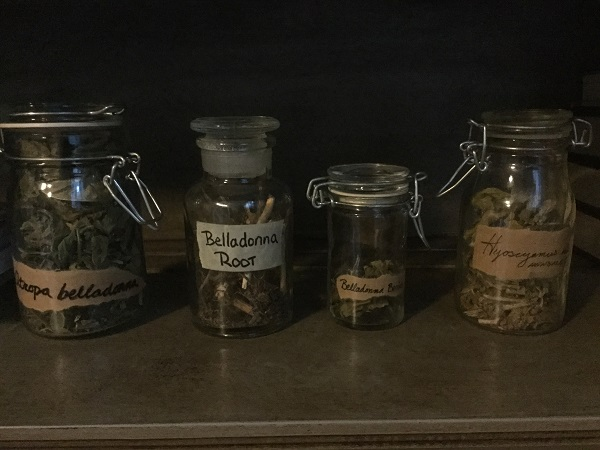 Some of my traditional witch's herbs.