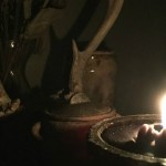 Bones, Blood and Poison: The Path of Traditional Witchcraft