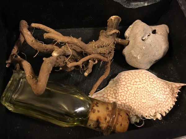 Arcane Artifacts. Belladonna root, Hagstone, Crab Shell. Photo courtesy of author.
