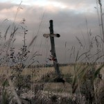 field cross