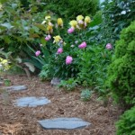 Mulch Madness, Practical Gardening