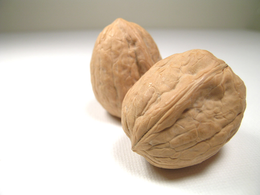 Walnuts Thanksgiving And A Garden Catechism Margaret