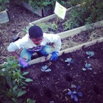 Mahasin's son Aadam Ibrahim Aleem in the garden, doing for self.