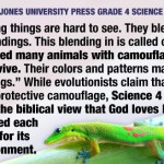 Teaching creationism is child abuse
