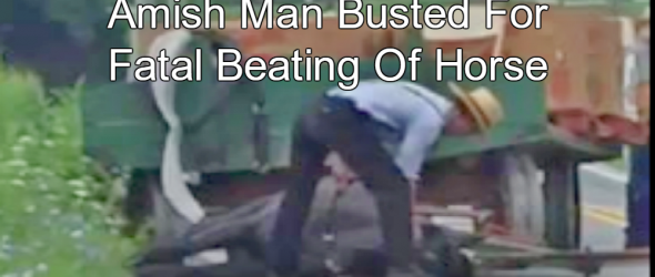 Amish Man Arrested For Fatal Beating Of Overworked Horse