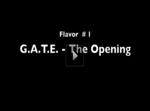 Episode 1: G.A.T.E.