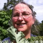 Harvesting Kale.  Cat Chapin-Bishop, 2013.
