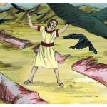 Genesis Chapter 15