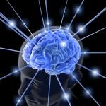 brain - nimh