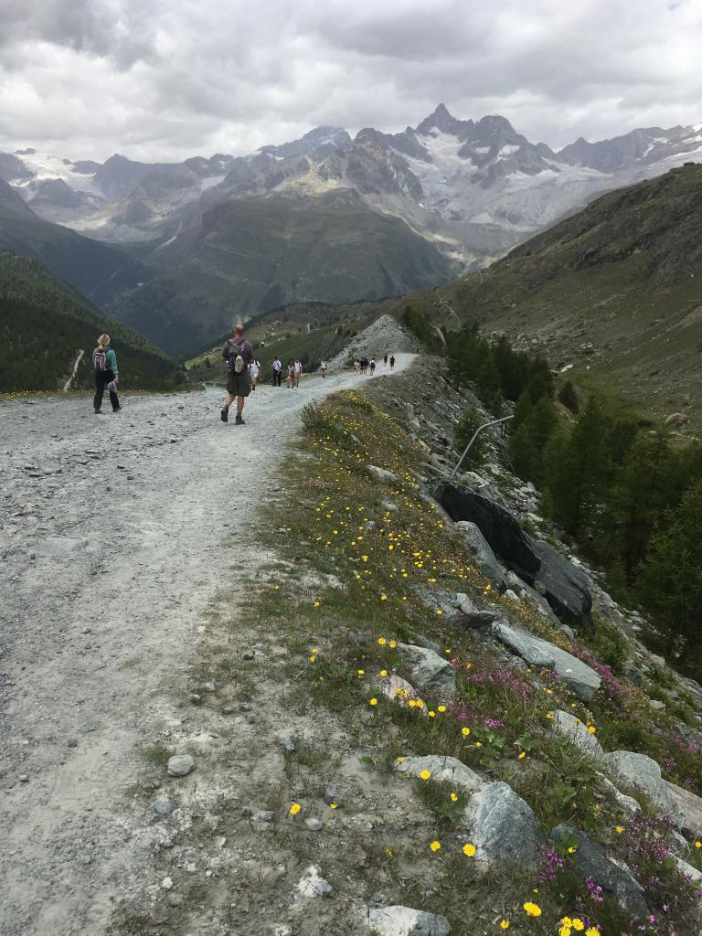 Hiking in Alps
