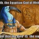 #TheBirdIsTheWord