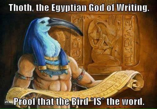 The-Bird-is-the-Word.jpg