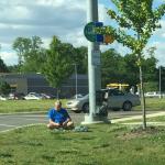 Bus Stop Zen