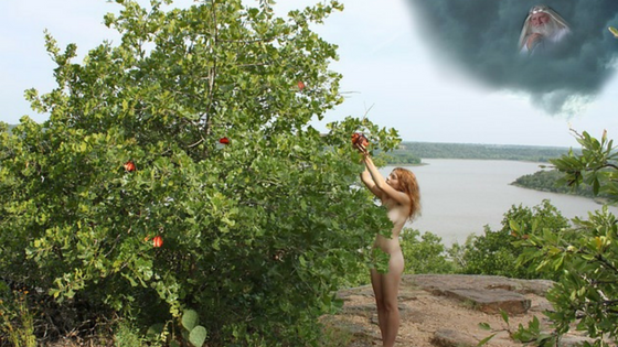 eve-picking-apple -from-tree