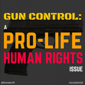 gun control a violation of human rights We know absolutely nothing about the morality of gun laws until we identify what, if any, natural individual human rights would be violated or protected by such laws.
