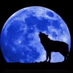 Blue Moon – waxing poetic