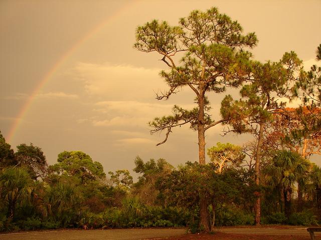 A rainbow over a cursed land. (Credit: Matt Kelland, CC-SA license.)