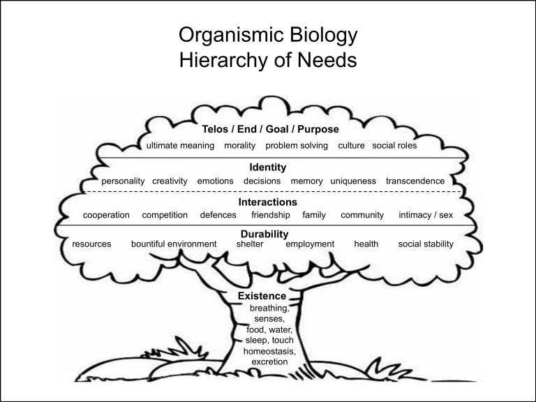 Replacing maslow with an evolutionary hierarchy of needs organismic biology is the only realm concerned with individuals before this we looked at components after this well look at collectives sciox Choice Image