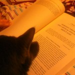 My cat loves feminist theology (photo by me)