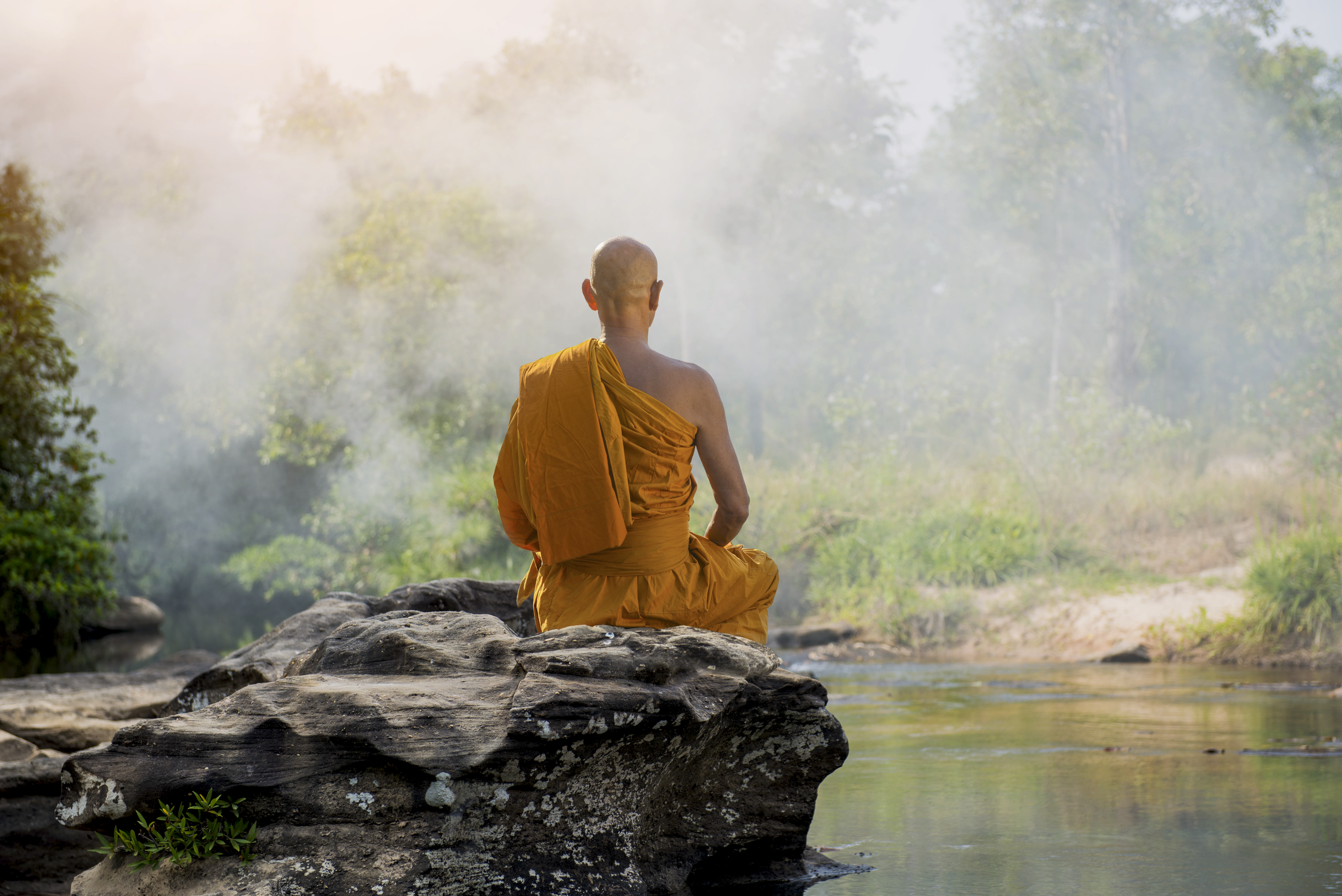 a look at the buddhist meditation process and its benefits They do look for it in the past buddhist meditation is one of the  benefits of yoga meditation  this is quite normal and is part of the process.