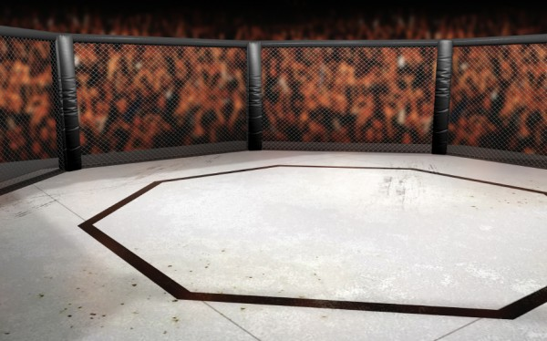 iStock.MMA.Ring.Wrestling.MMAjpg